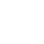 new york immigration family law firm litigation commerce investment multilingual florida bar board certicate